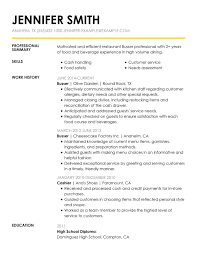 Server Experience Resume Examples Resume Server Sample Resume