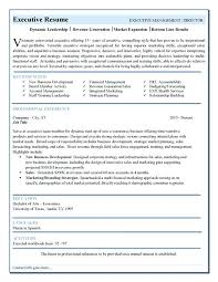 Executive Resume Template Word Magnificent Executive Resume Templates Word Curriculum Vitae Samples For Sales