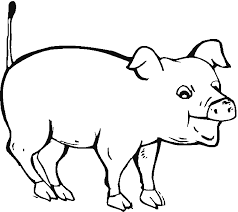 Small Picture Excellent Pig Coloring Pages Cool Gallery Colo 1209 Unknown