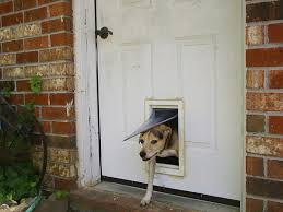 diy dog doors. Great Dane Dog Doors For Sliding Glass Screen Door With Built In Extra Large Diy