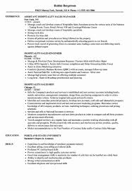 Resume Template For Sales Position Lovely Sales Manager Resume