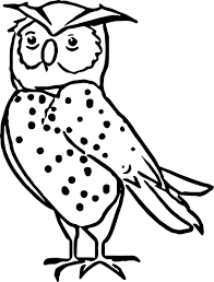 Nice Nocturnal Animals Coloring Pages