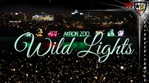 Akron Ohio Zoo Lights 4 Minute Tour Akron Zoo Wild Lights Spectacular Holiday Traditions Fast Paced Family Vlogs