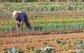 Governo Temer acelera agenda da MP que enterra reforma agrária
