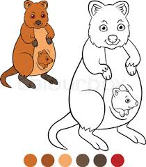 Small Picture Quokka Q letter Cute children animal alphabet in vector Funny