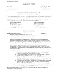 Operating And Finance Executive Resume It Examples Samples Sen Sevte