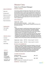 Entry Level Resume Template Simple Entry Level Project Manager Resume Junior Business Analysis Areas