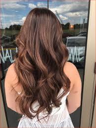 Light Hazelnut Brown Hair Color Luxury Latest Color For Hair Photos Of Hair Color Style 2020