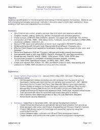 Fine Experienced Net Developer Resume Format Ideas Professional