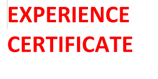 Experience Certificate L To Whomsoever It May Concern Youtube