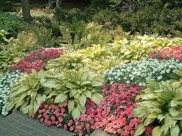 Small Picture 32 best images about Gardening on Pinterest Gardens Hosta