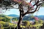 imagem de Consolação Minas Gerais n-5