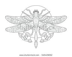 coloring pages dragonfly coloring pictures book s vector ilration stock for anti stress tattoo