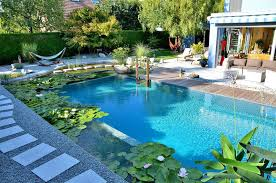 What Are Natural Swimming Pools CONTEMPORIST