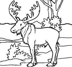 Forest Animal Coloring Page Printable Animal Coloring Pages Free Animal Coloring Pages Printable