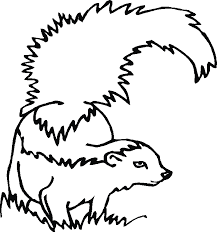 Small Picture Skunk Coloring Pages For Kids Coloring Home