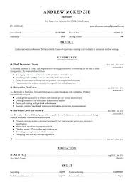 Example Bartender Resume Inspiration Creative Bartender Resume Templates Job Description Template