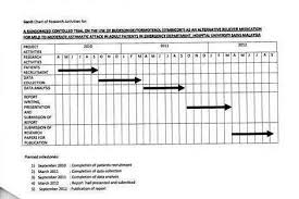 Gantt Chart Example For Research Proposal Research Proposal Gantt Chart Custom Paper Example