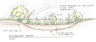 Small Picture Beautiful Home Rain Garden Design With Rain Garden Design Parking