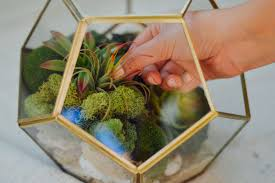 Make your own easy DIY decorative terrarium with sand, stones, moss, and  faux