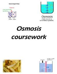osmosis coursework gcse science marked by teachers com osmosis coursework the aim of this investigation is