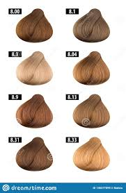 Hair Dye Colours Chart Colour Numbers 9 Stock Image