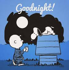 goodnight charlie brown with snoopy on his dog house z woodstock sleeping in his nest