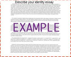 Describe Your Essay Describe Your Identity Essay Coursework Academic Service