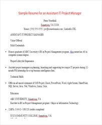 Resume Templates For Wordpad Gorgeous Manager Resume Sample Templates 48 Free Word PDF Documents