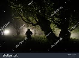 Moonlight Tree Lighting Night Fog Village Mysterious Moonlight Lighting Stock Photo