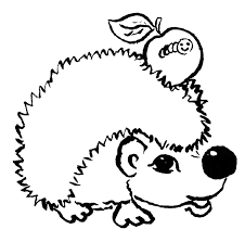 Hedgehog Coloring Page Animals Town Animals Color Sheet