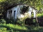 imagem de Jardim Alegre Paraná n-16