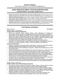 Manager Resume Non Profit Development Sample Proj Sevte