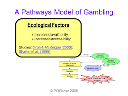 Example Of Classical Conditioning Classical Conditioning Gambling Examples Parx Casino Exit 6 Nj