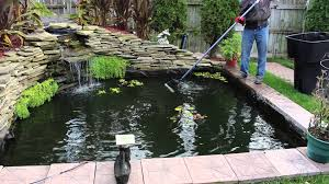 how to clean a koi pond. Simple Koi On How To Clean A Koi Pond L