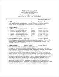 Resume For Self Employed Bookkeeper Archives 1080 Player