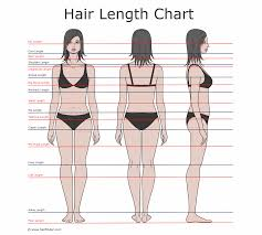 Hair Growth Length Chart Descriptions Of Hair Lengths And Growing Times Hair Length