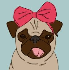 cute pug drawing.  Drawing Pug And Cute Image For Cute Pug Drawing