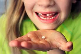 How Many Teeth Do Kids Lose Lovetoknow