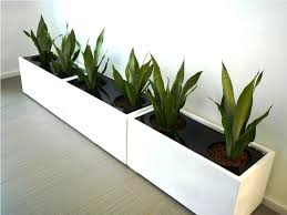 modern indoor planters ideas  best home decor inspirations