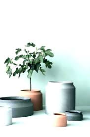 large indoor tree pots large indoor tree pots tall flower pots tall plant pots outdoor large large indoor