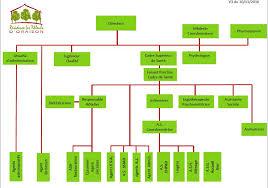 organigramme et organisation