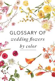 a glossary of wedding flowers by color brides
