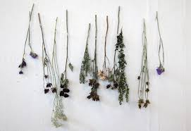 How would you decorate with dried flowers?