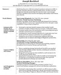 Resume Objective Marketing Resume For Your Job Application