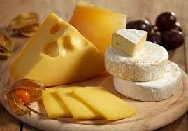 Bildergebnis für käse