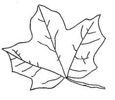 Small Picture Fall Coloring Pages Fall Coloring Pages Pinterest Fall