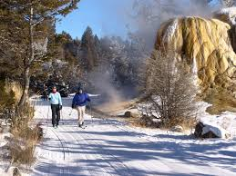 9 reasons to visit yellowstone in winter