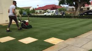Grass Couch Reel Mowing Bermuda Couch Grass Youtube