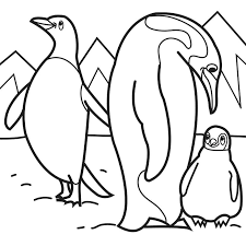 Coloring Pages Penguin Coloring Pages Page Free Printable Baby